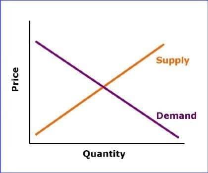 Role of Business Economics