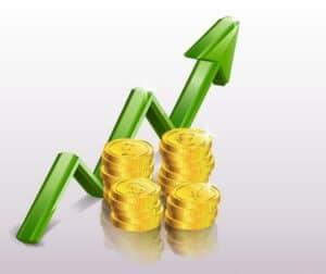 profitable revenue growth
